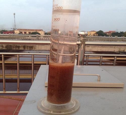 bùn vi sinh hiếu khí