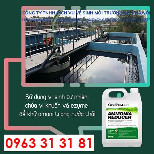 amoni Ammonia Reducer