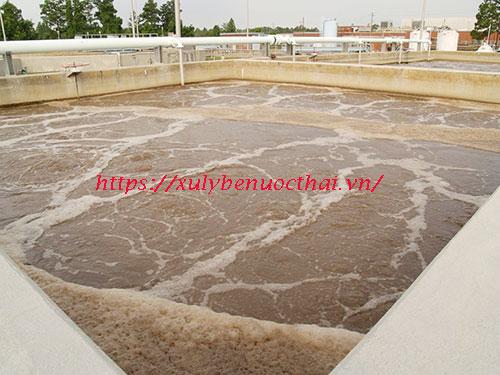 vai trò của bùn vi sinh trong xử lý nước thải