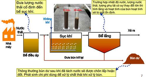 Quá trình chuyển hóa chất bẩn của bùn vi sinh