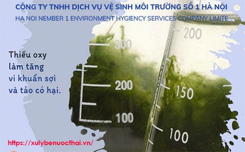 bùn vi sinh chết do thiếu oxy