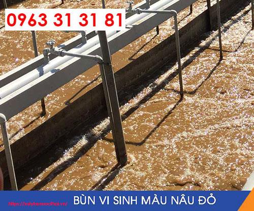 Nguyên nhân bùn vi sinh chết & cách khắc phục hiệu quả