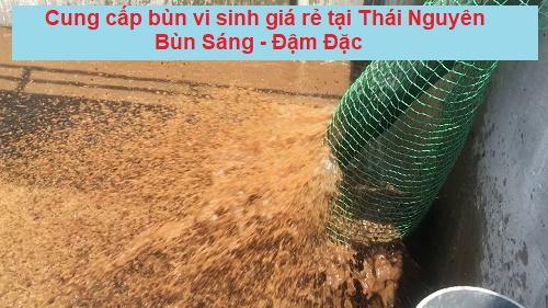 Đơn vị cấp bùn vi sinh chất lượng – giá rẻ tại Thái Nguyên