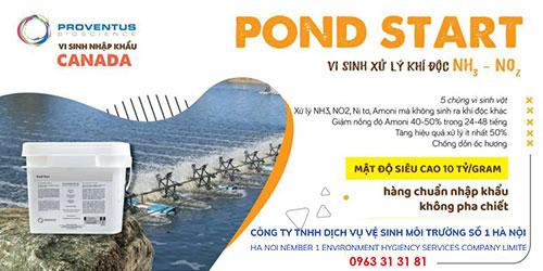 Vi sinh Pond Start xử lý amoni bể phốt