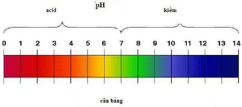 pH ảnh hưởng đến sinh trưởng vi sinh vật
